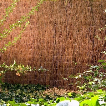 Sichtschutzmatte / Heidematte Hawaii Noor 1x3m natur Bild 2