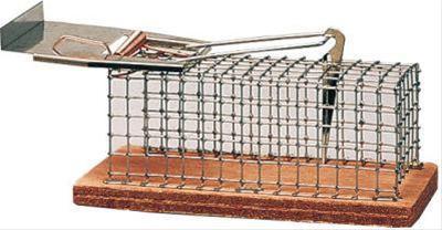 Drahtkäfigfalle / Mausefalle Luna 130x50x50mm Bild 1