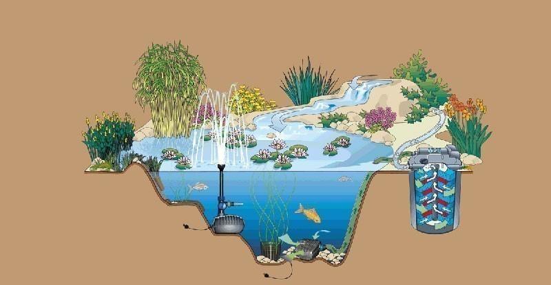 Grafik gartenteichpumpe und bachlaufpumpe oase for Gartenteich shops